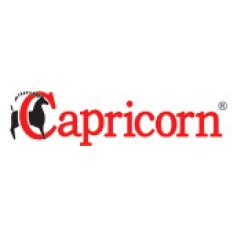 Capricorn S.A.